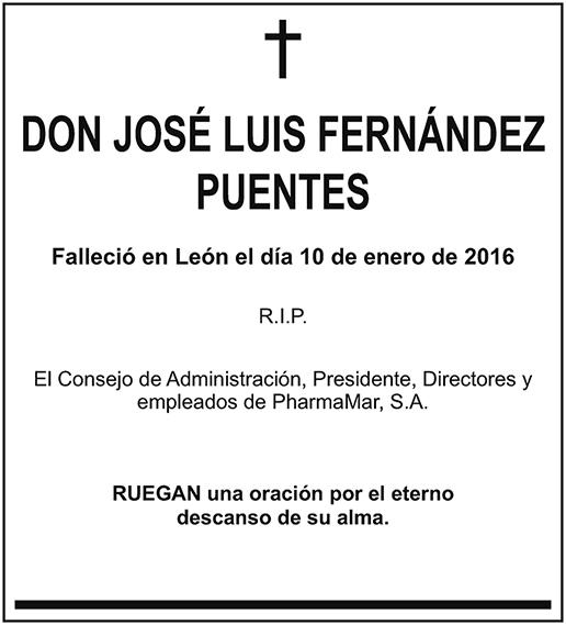 José Luis Fernández Puentes