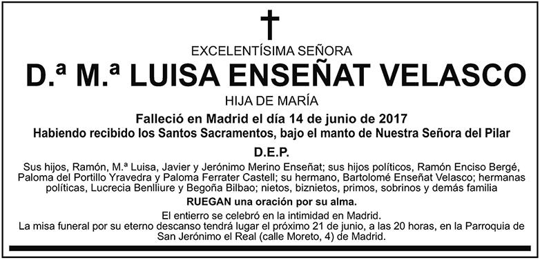 M.ª Luisa Enseñat Valasco